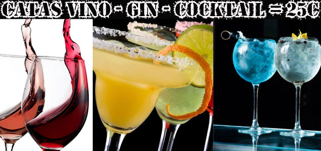 Catas - Vino - Cocktail - Gin Tonic
